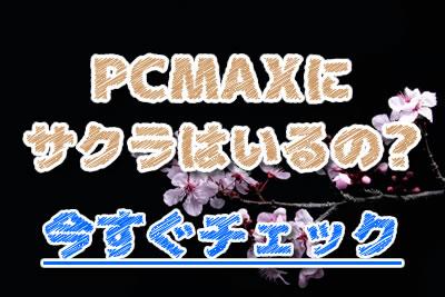 PCMAX サクラ