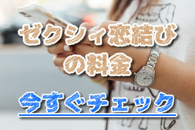 ゼクシィ恋結び 料金